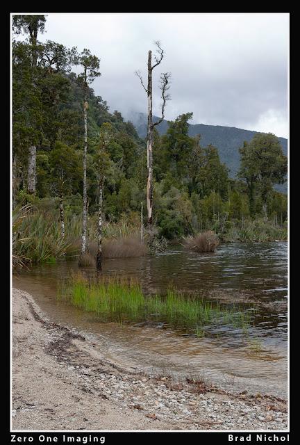 6mp Canon DSLR, Super Resolution test, pond photo in NZ