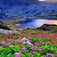WowEscape-Spring Valley E…