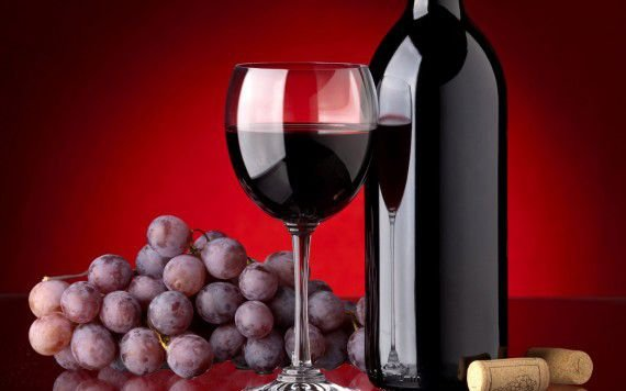 Curso gratuito de produção de uva e vinho em Canoinhas