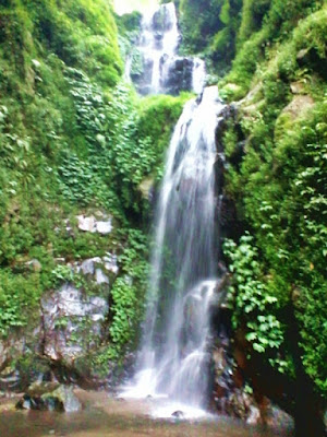 Kesejukan Air Terjun Alap-Alap di Pegunungan Arjuna-Welirang