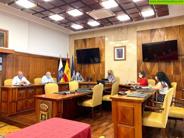 El Cabildo y ZEC trabajan para potenciar los beneficios fiscales para las empresas palmeras