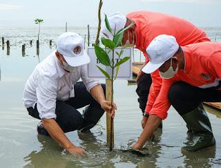 Dihari Lingkungan Hidup, Pemkab Batu Bara Tanam 3100 Pohon Magrove