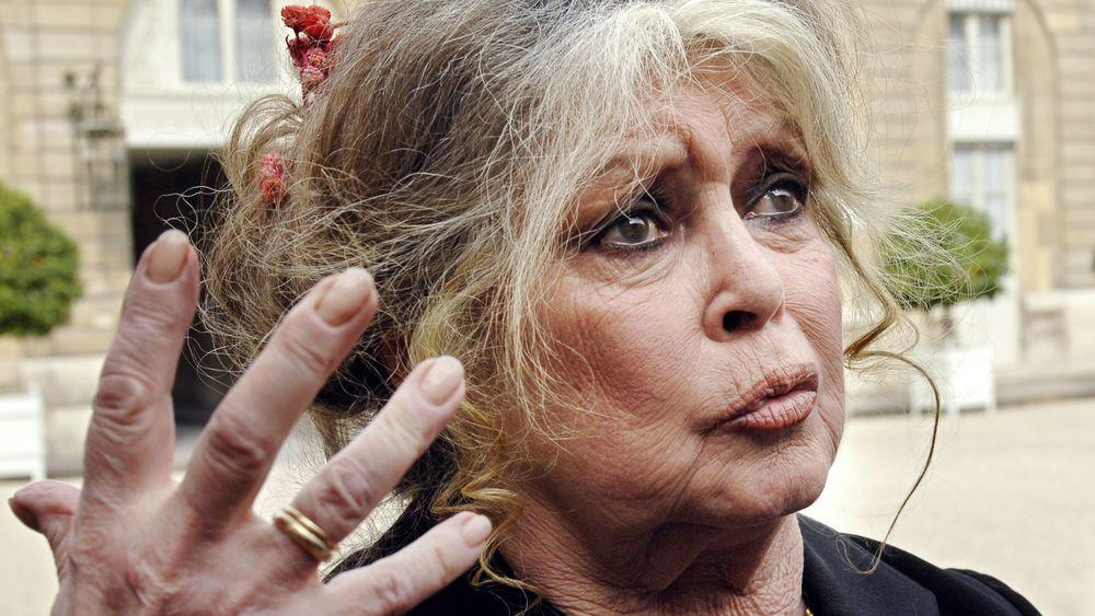 Brigitte Bardot très en colère : elle veut quitter la France et insulte violemment le gouvernement