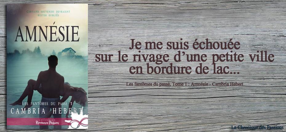 http://lachroniquedespassions.blogspot.com/2018/10/les-fantomes-du-passe-tome-1-amnesie-de.html
