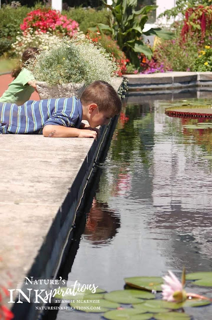 Picture taken of my son at the Toledo Zoo c. 2009 in front of the Conservatory admiring the pool of lily pads | Nature's INKspirations by Angie McKenzie | The Joy of Sets Something New Blog Hop, January 2020