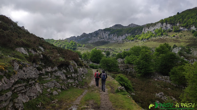 Camino de Pandecarmen a Vega la Piedra