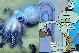 Squidward Tentacles adalah Gurita