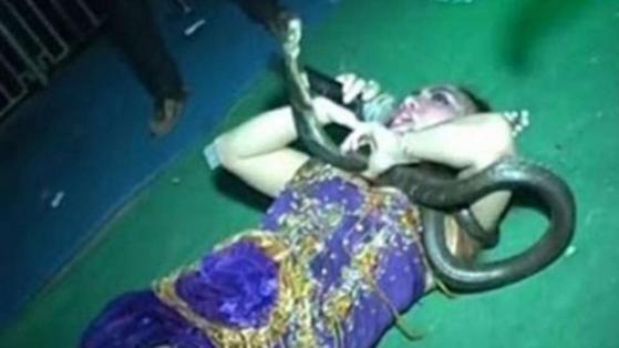 Popstar morre no palco após picada de cobra