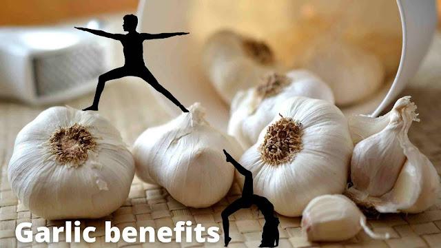 garlic-in-hindi