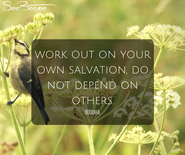 8. Work out on your own salvation, do not depend on others. - Buddha