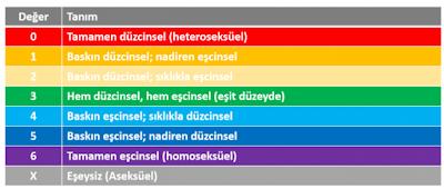 Kinsey%2BSkalas%25C4%25B1 Toplumsal Cinsiyet ve Cinsiyet Özgürleşmesi