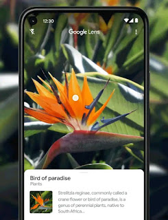 How to Use Google Lens in 2021: Download Google Lens for Android, iOS, and PC