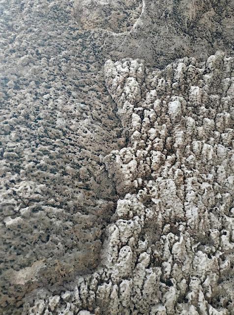 Textura de piedra del Salar de Uyuni