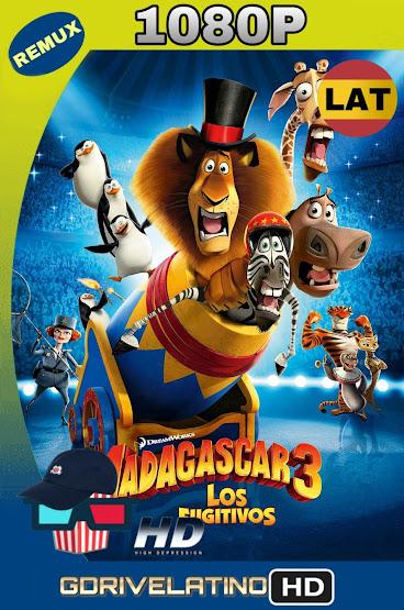 Madagascar 3 (2012) BDRmux 1080p Latino-Ingles MKV