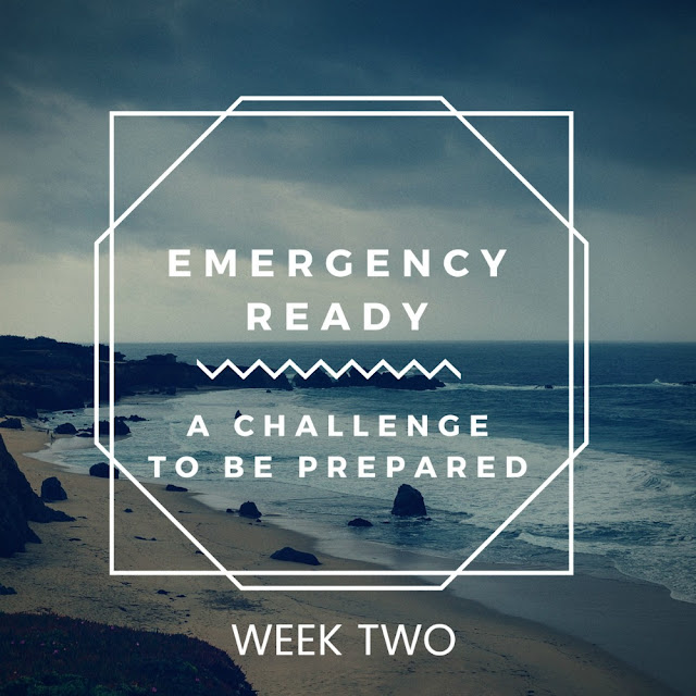 Be emergency ready - a preparedness challenge - Organizing your important documents