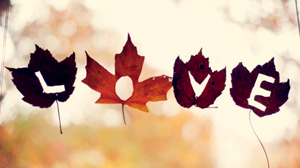 The word love craved into fall leaves.