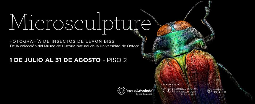 Microsculpture Parque Arboleda Pereira