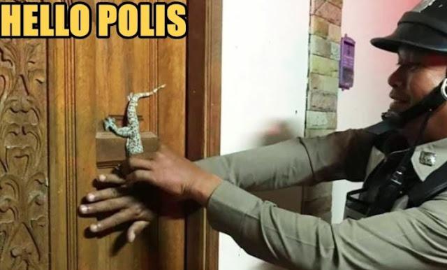 Hanya Ada Tokek Menempel Dipintu Rumah, Wanita Ini Ketakutan Sampai Lapor Ke Polisi