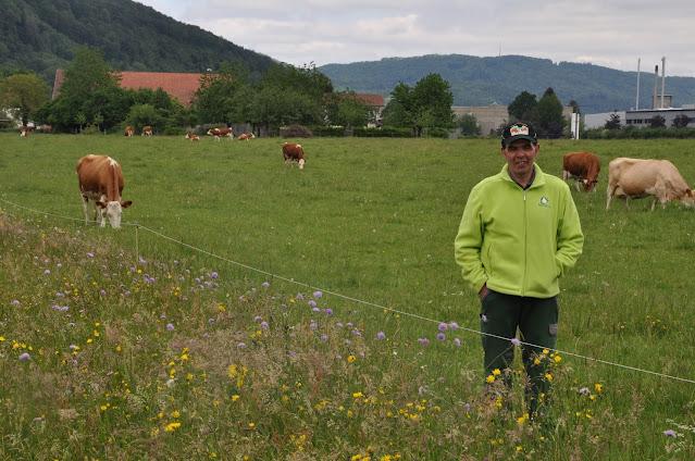 Milch ganz aus Gras