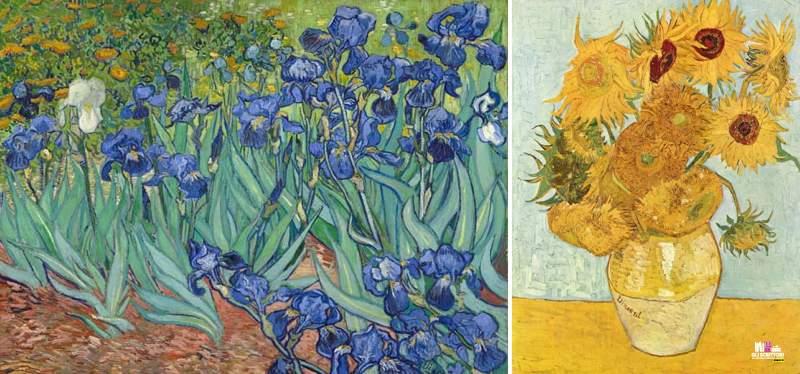 Iris e I girasoli