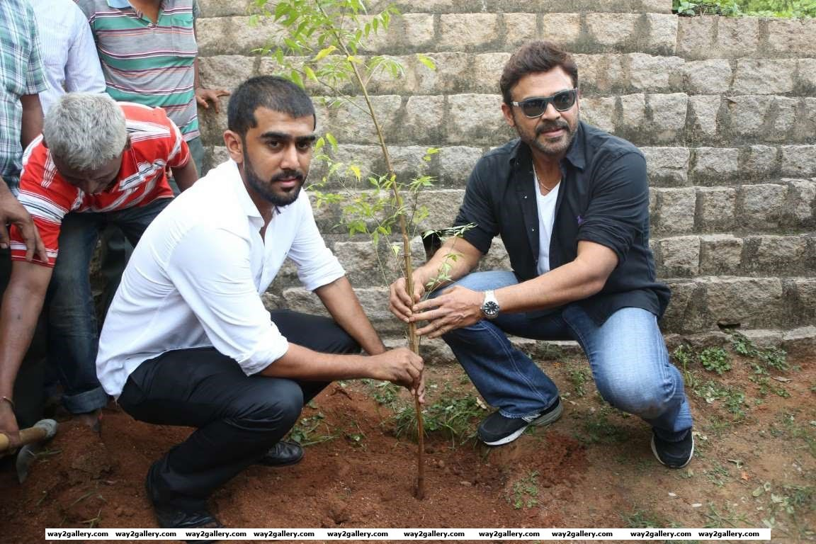 Venkatesh lend his support to the Haritha Haram programme