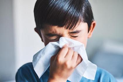 Mengenal Penyakit Rhinitis Alergi, Gejala, Hingga Pengobatannya
