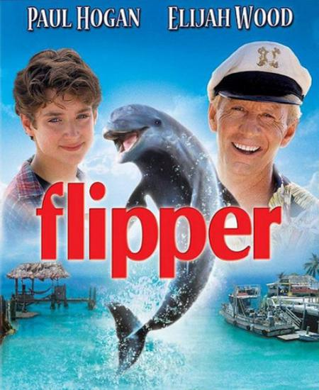 Flipper 1996 Dual Audio Hindi-English 720p BluRay x264 AAC ESub 685MB Download