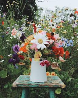 اجمل باقات الورود الجميلة فى الحديقة