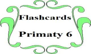 تحميل فلاش كاردز اللغة الانجليزية - الصف السادس الابتدائى