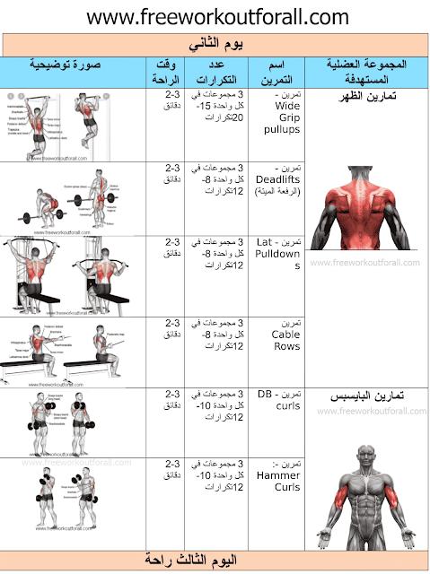 جدول تمارين كمال اجسام 4 أيام