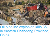 https://sciencythoughts.blogspot.com/2013/11/oil-pipeline-explosion-kills-35-in.html