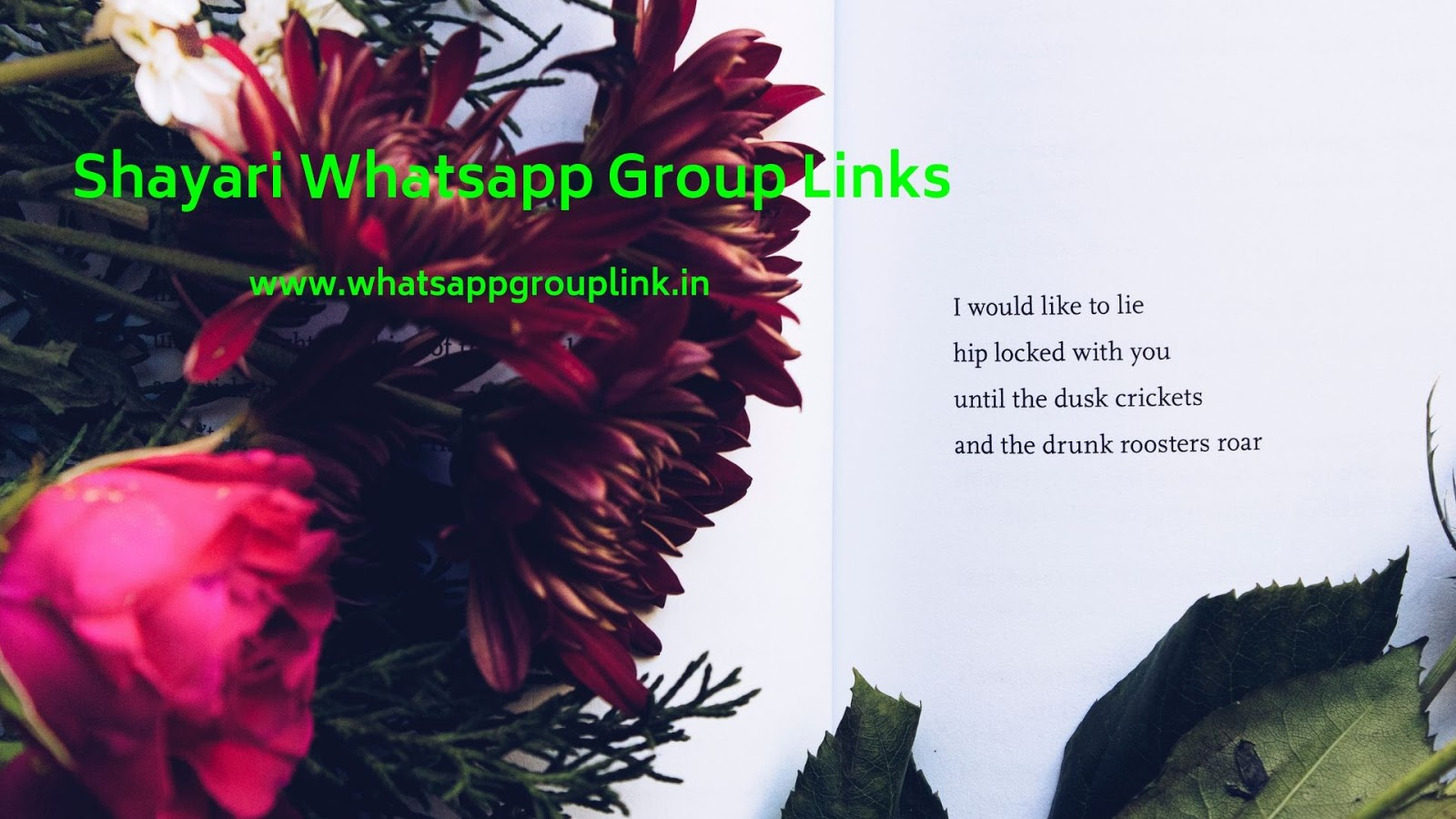 Whatsapp Group Link: Shayari Whatsapp Group Links