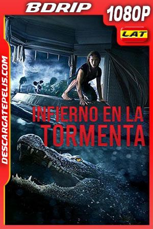 Infierno en la tormenta (2019) 1080p BDrip Latino – Ingles