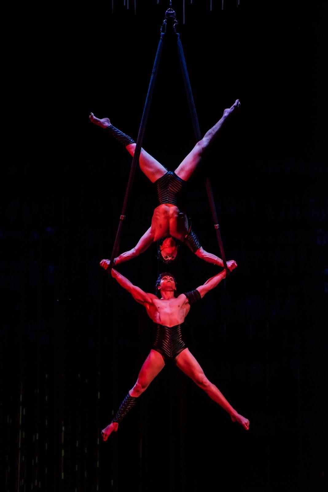 Cirque du Soleil Varekai | Newcastle Review & Tickets  - trapeze