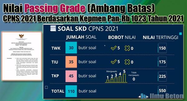 Nilai Passing Grade (Ambang Batas) CPNS 2021 Berdasarkan Kepmen Pan-Rb 1023 Tahun 2021