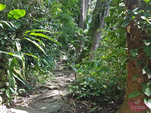 Parques para passear no Rio