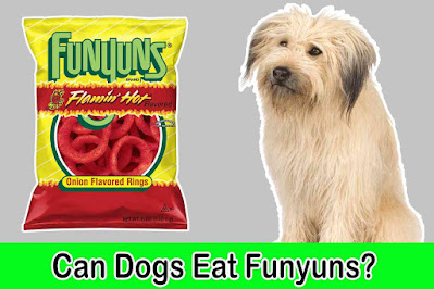 can dogs eat funyuns, can dogs have funyuns, are funyuns chips good for dogs