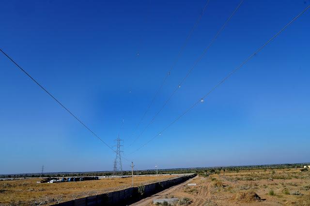 Bird Flight DIverter
