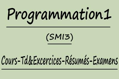 Programmation 1 SMI3 Cours // Td Et Exercices // Résumés // Examens