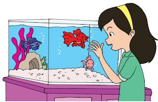 Dayu dan Ikan Hias www.simplenews.me