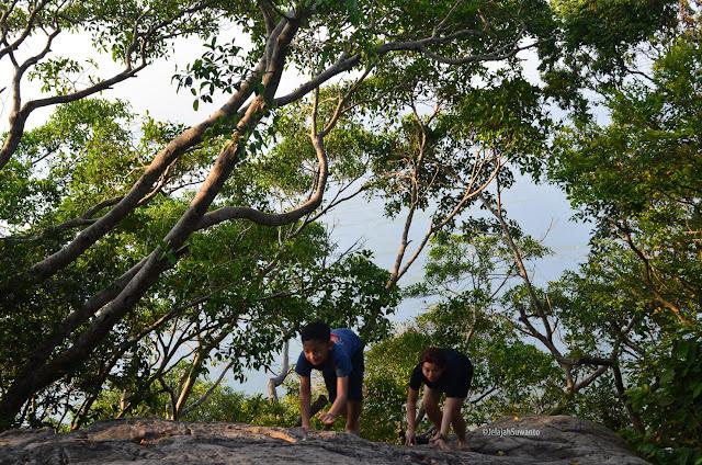 Batu andesit di jalur pendakian Gunung Lembu | JelajahSuwanto