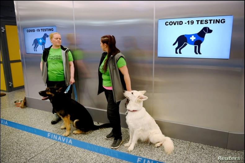 Los perros detectores de coronavirus, Valo y E.T., esperan a los pasajeros junto a sus adiestradores en el aeropuerto de Helsinki / REUTERS