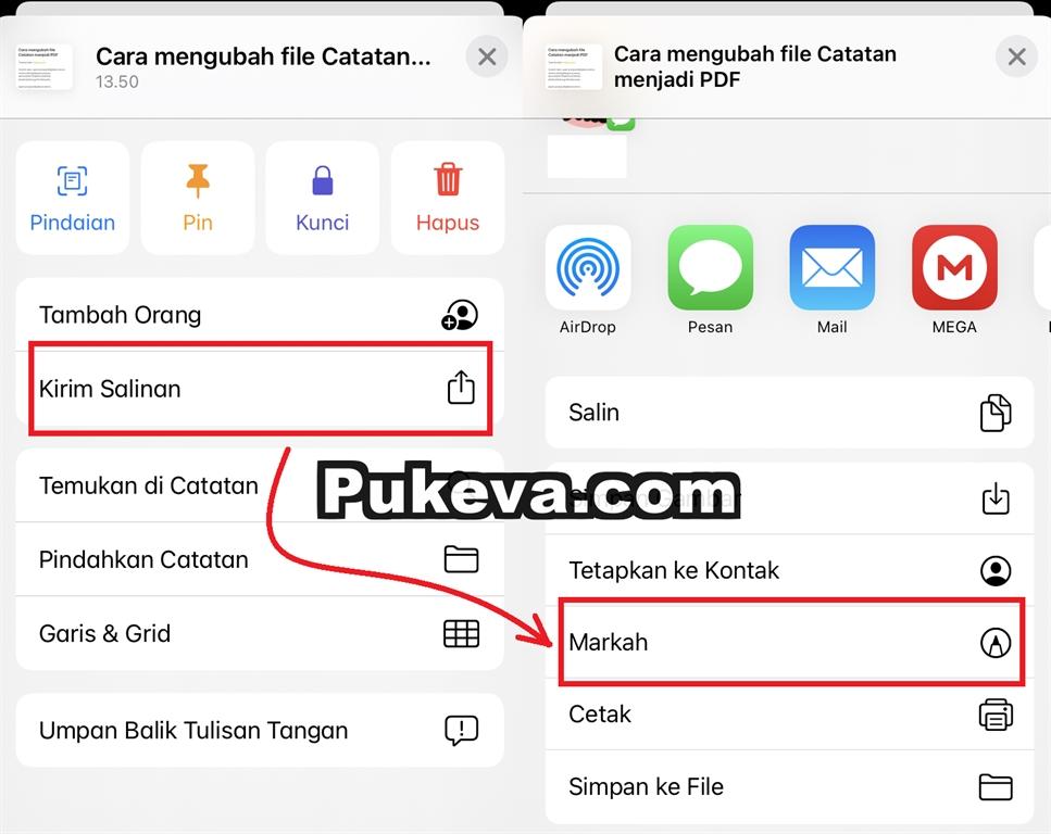 Cara Mengubah Catatan Ke File Pdf Di Iphone Dan Ipad Pukeva