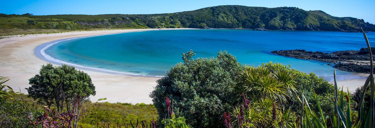 Whangarei Heads - Ocean Beach, Northland, NZ | ธรรมชาติ