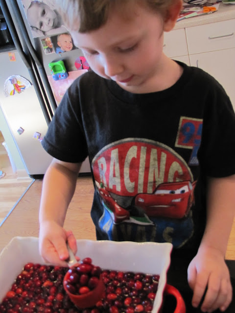 Cranberry Thanksgiving activity