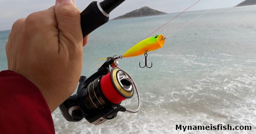Best lure for sea bass. Best fishing line for sea bass