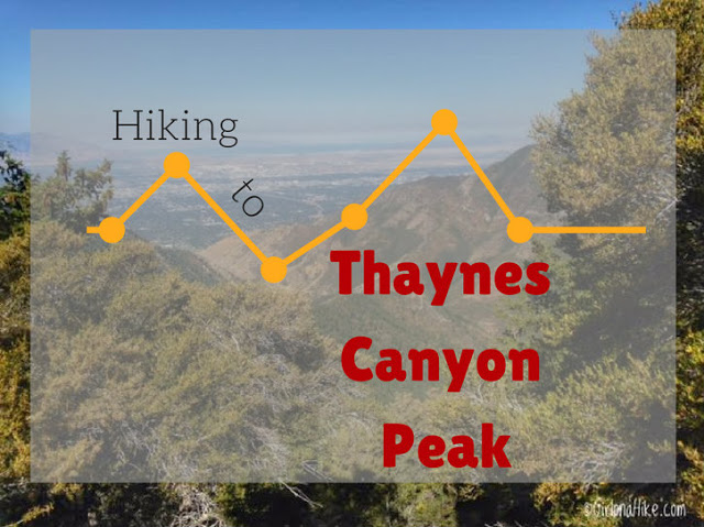 Hiking to Thayne's Canyon Peak, Millcreek Canyon