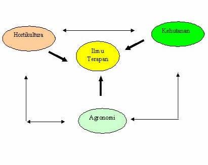 Gambar Hubungan antara hortikultura dengan ilmu lainnya