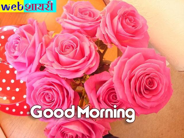 GOOD MORNING ROSES PICS