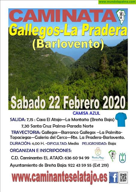 """CARNAVAL PARA CAMINAR: """"Gallegos - La Pradera"""""""